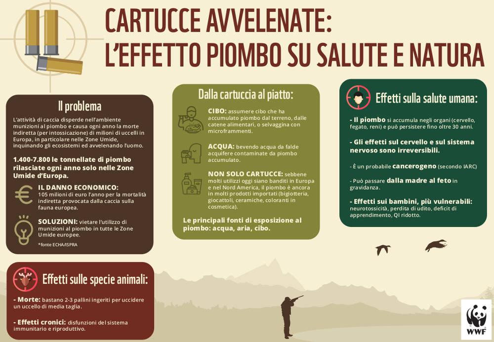 Infografica Cartucce avvelenate