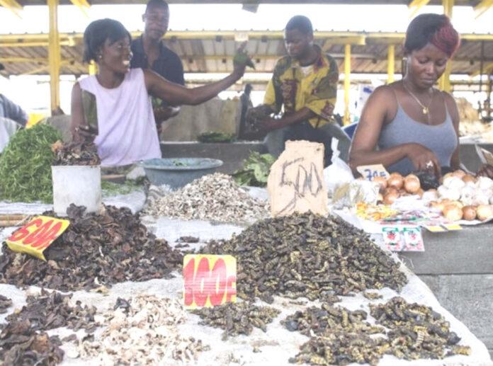 Bruchi in vendita a Kinshasa, Repubblica Democratica del Congo - Fao Giulio Napolitano
