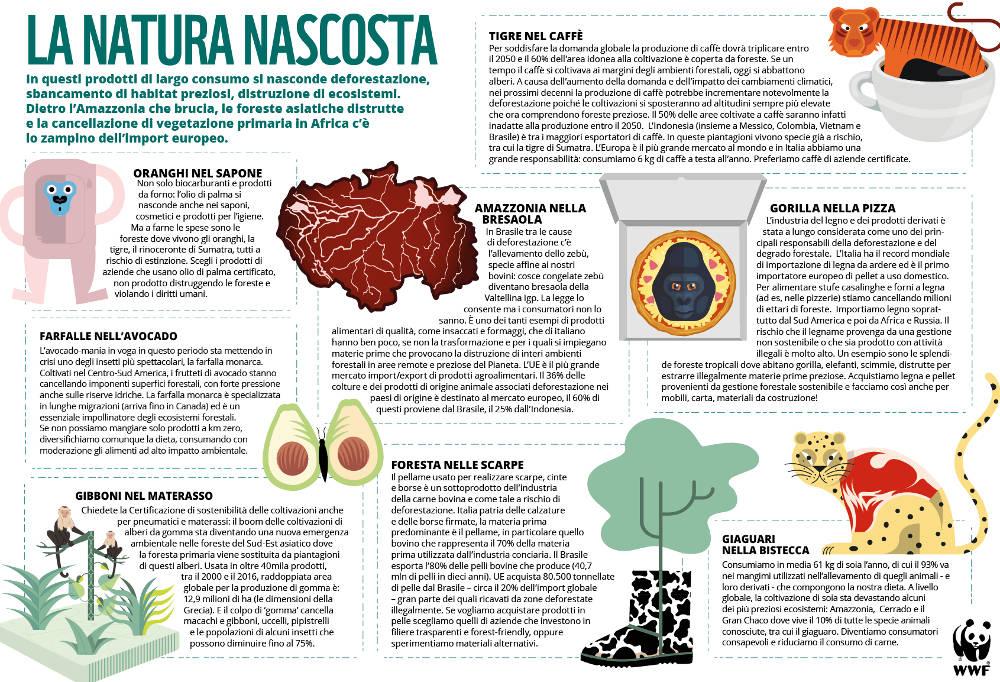 Infografica - La natura nascosta