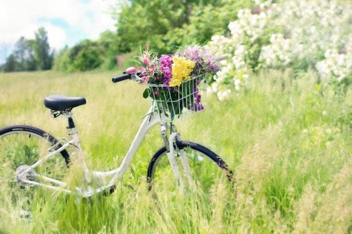 bicicletta turismo campagna