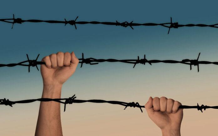 mani filospinato guerra prigione