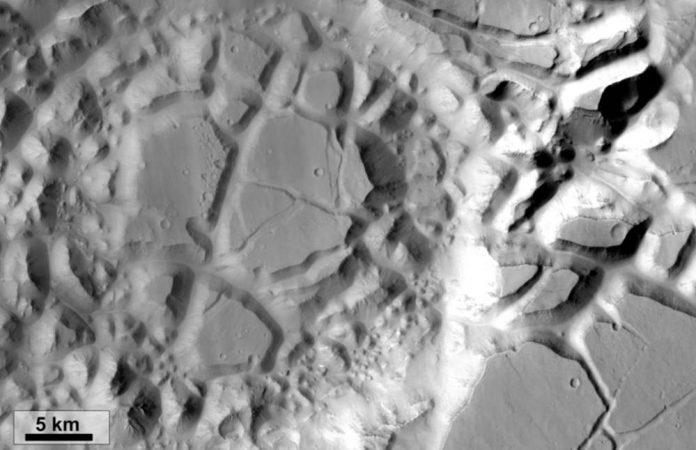 Marte cnr1