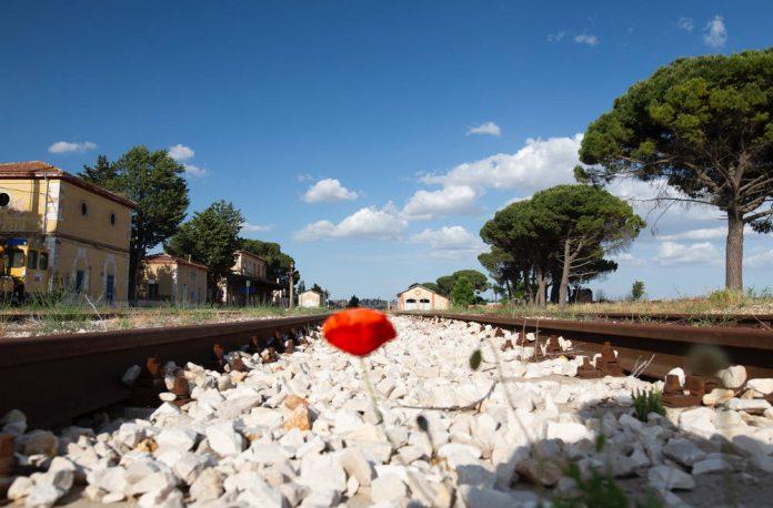 Spinazzola stazione e binari Foto di Alessandro Capurso