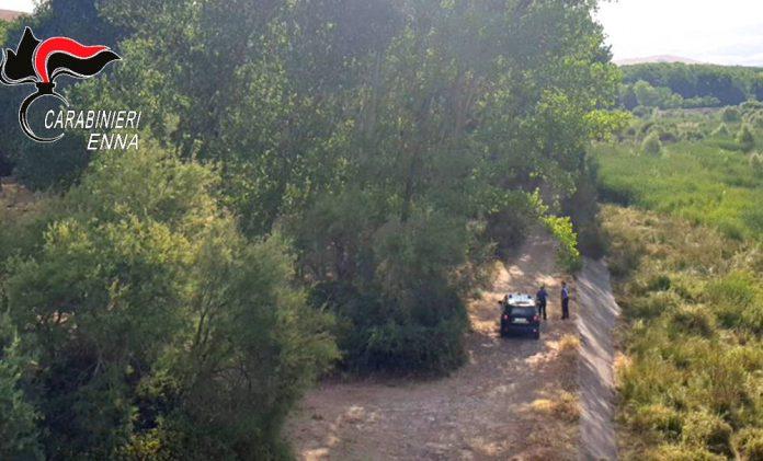 carabinieri forestali nebrodi