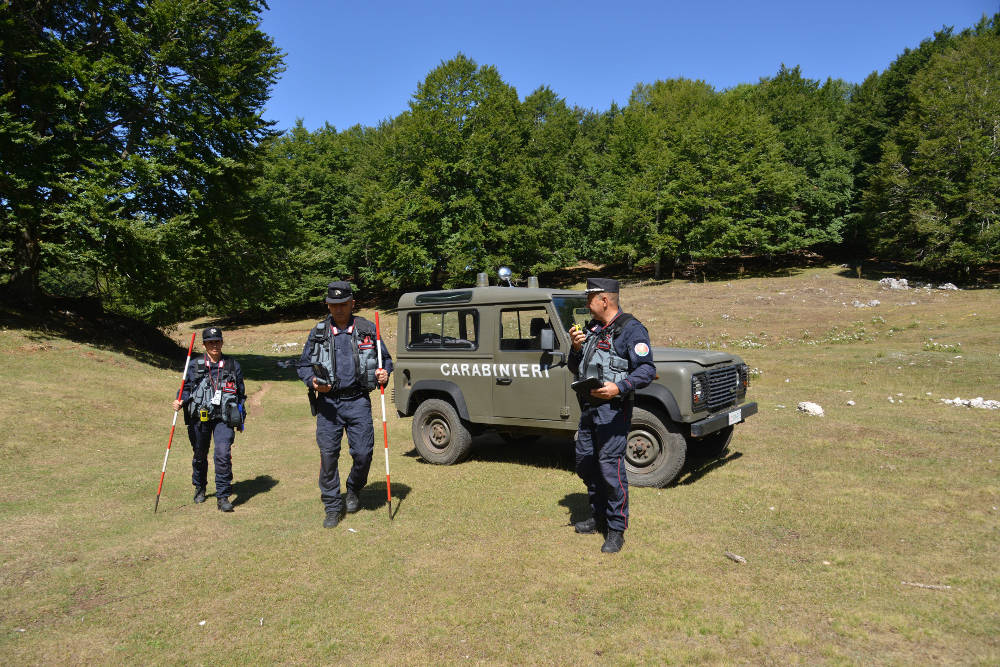 carabinieri forestali inventario